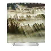 Sun Rays Over Foggy Oregon Forest Shower Curtain