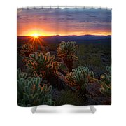 Sun Sets Over The Sonoran  Shower Curtain