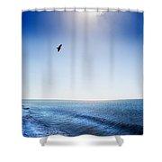 Sun Shade Shower Curtain