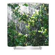 Sun Shower Photograph Shower Curtain
