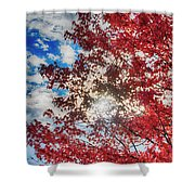 Sun Sky Clouds And A Red Maple Shower Curtain