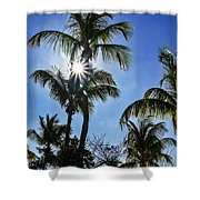 Sun Through Smathers Beach Palms Shower Curtain