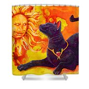 Sun Worshiper Shower Curtain