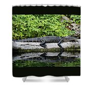 Sunbathing Shower Curtain