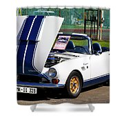 Sunbeam Tiger Shower Curtain