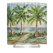 Sunburst Beach Morning Shower Curtain