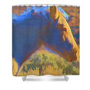Sunday Morning At The Red Willows Shower Curtain