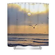 Sunday Morning Coming Down Shower Curtain