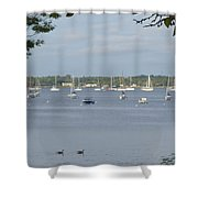 Sunday Morning Swim On Manhasset Bay In Port Washington, Ny Shower Curtain