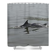 Sunday Swim Shower Curtain