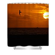 Sundown Flight Shower Curtain