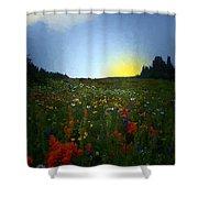 Sundown Wildflower Meadow Shower Curtain