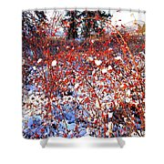 Sundrenched Rosehips Shower Curtain