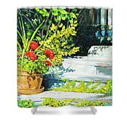 Sunfilled Steps 01 Shower Curtain