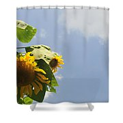Sunflower 3 Shower Curtain