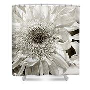 Sunflower 4 Shower Curtain