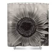Sunflower 6 Shower Curtain