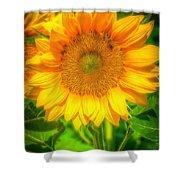 Sunflower 8 Shower Curtain