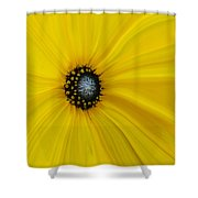 Sunflower Abstract Shower Curtain