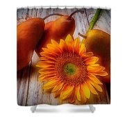 Sunflower And Pears Shower Curtain