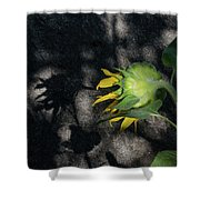 Sunflower And Shadow Shower Curtain