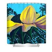 Sunflower And Spider Shower Curtain