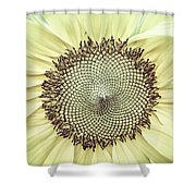 Sunflower Ant Shower Curtain