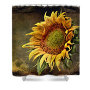 Sunflower Art 2 Shower Curtain