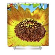 Sunflower Art Prints Orange Yellow Floral Garden Baslee Troutman Shower Curtain