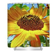 Sunflower Art Prints Sun Flowers Gilcee Prints Baslee Troutman Shower Curtain