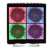 Sunflower Centered Color Collage 4 Shower Curtain