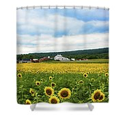 Sunflower Country Landscape  Shower Curtain