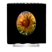 Sunflower Dawn In Oval Shower Curtain