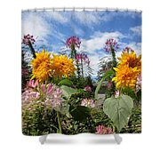 Sunflower Day Shower Curtain