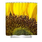 Sunflower Detail Shower Curtain