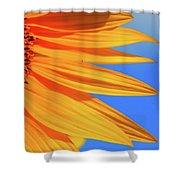 Sunflower Elegance Shower Curtain