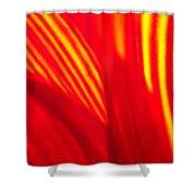Sunflower Fire 3 Shower Curtain