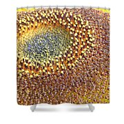 Sunflower Heart Shower Curtain