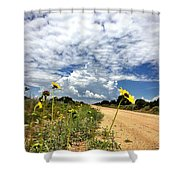 Sunflower Hitchhikers Shower Curtain