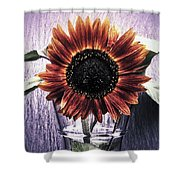 Sunflower In A Cup Shower Curtain