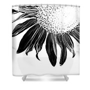 Sunflower In Corner Bw Threshold Shower Curtain
