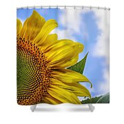 Sunflower In The Clouds Shower Curtain