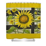 Sunflower In Your Face Shower Curtain