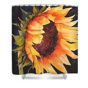 Sunflower Shower Curtain by Karen Stark