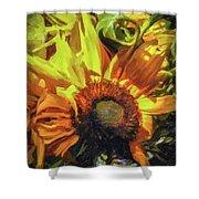 sunflower No. 1 Shower Curtain