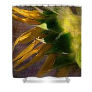 Sunflower On The Side Shower Curtain