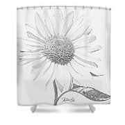 Sunflower  P Shower Curtain