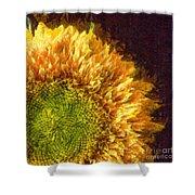 Sunflower Pencil Shower Curtain
