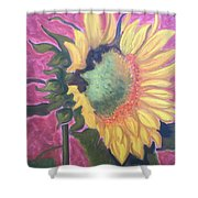 New Mexico Sunflower Shower Curtain