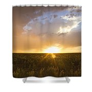 Sunflower Set Shower Curtain